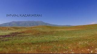 Restored Seasonal Pastures Feed More Livestock in Kazakhstan