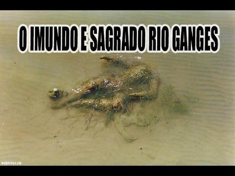 O IMUNDO E SAGRADO RIO GANGES - ÍNDIA [+18] [IMAGENS FORTES]