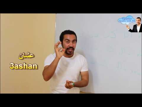 Egyptian Arabic Lesson in the class with Ali Gamal