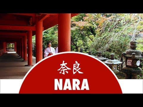 Discover Nara City - Japan