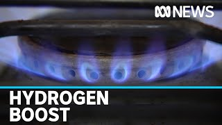 Hydrogen to be mixed with natural gas in Adelaide trial | ABC news