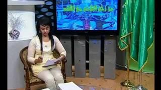 فضيحة القناة الليبية