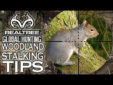 Squirrel Hunting Masterclass With Airgun Legend Terry Doe