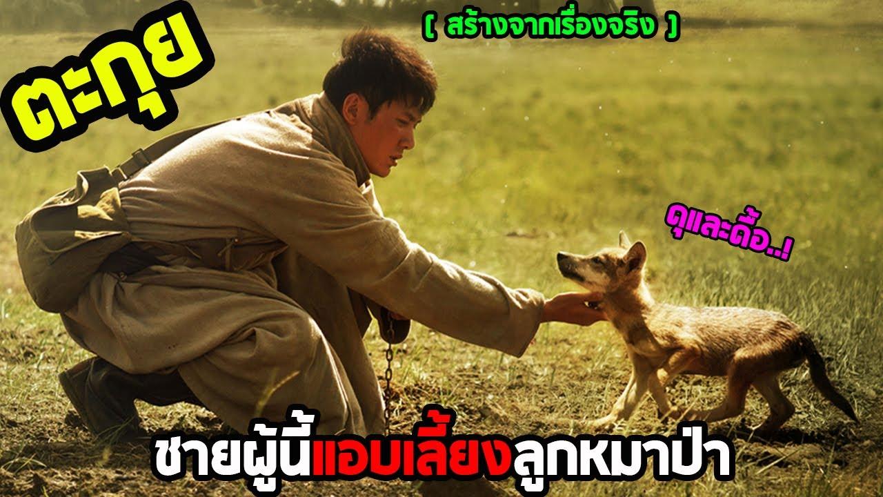 เมื่อทางการพยายามกำจัดหมาป่า แต่ชายคนนี้เลือกที่จะช่วยมัน l สปอยหนัง l - เพื่อนรักหมาป่าสุดขอบโลก