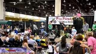 2014 Reno Expo Pug Parade!