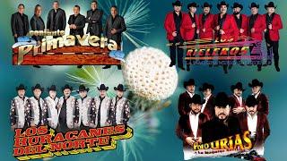 Los Rieleros Del Norte, Conjunto Primavera, Los Huracanes Del Norte, Polo Urias y La Maquina Nortena