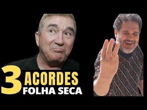 AMADO BATISTA - COMO TOCAR FOLHA SECA 3 ACORDES - AULA DE VI0LÃO PARA INICIANTES- PROF CLÓVIS