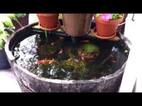 The best way to aquascape my barrel pond !