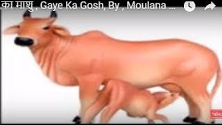 गाय का माशु , Gaye Ka Gosh,  By , Moulana Jarjis Ansari