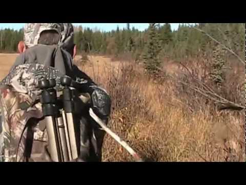 Smithers BC Moose Hunt 2012