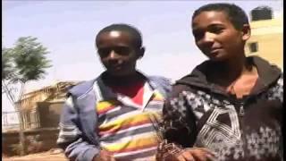 new eritrean music 2015 ወርሒ የላን   werhi yelan tesfay mehari