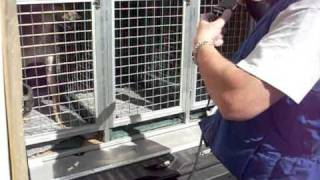 transport devti greyhoundů chrastava 12 9 2010 gacr