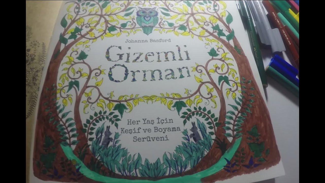 Enchanted Forest 1 Gizemli Orman By Johanna Basford Youtube