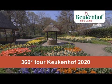 360° tour Keukenhof 2020🌷 - Keukenhof Virtually Open