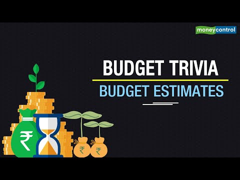What Is Budget Estimate?