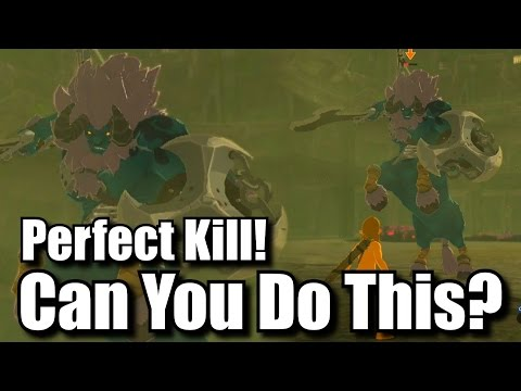 Perfect Kill A Blue Lynel Challenge - No Armor, Abilities, Or Runes - Zelda Breath Of The Wild