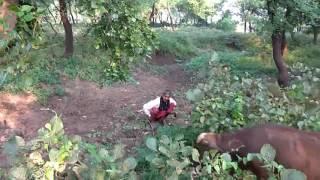 स्वाच्छ भारत अभियान जिला मास्टर ट्रेनर जितेन्द्र हथिया(1)