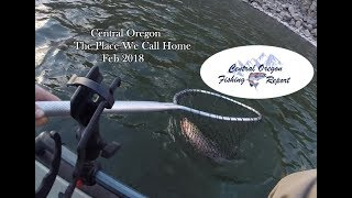 Download Video The Place We Call Home - COFR With A Superbowl Trout 2018 MP3 3GP MP4