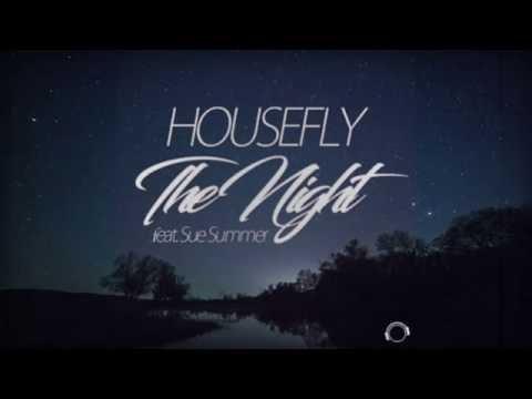 Housefly feat. Sue Summer – The Night (Lyrics Video)