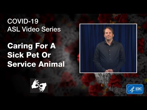 ASL Video Series: Caring for a Sick Pet or Service Animal