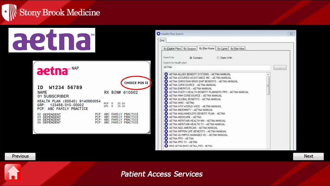 Aetna Insurance Card Plan Id | aesthetic name