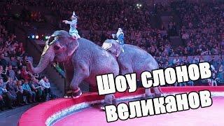 Vlog: Варя в цирке / Шоу слонов великанов / Новосибирск