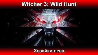 Ведьмак 3 - Хозяйки леса #11