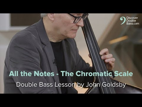 All The Notes - The Chromatic Scale. John Goldsby Bass Lesson.