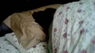 Video My mother snoring download MP3, 3GP, MP4, WEBM, AVI, FLV November 2017