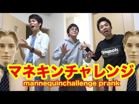 【大流行】マネキンチャレンジでドッキリしたら!? mannequinchallenge