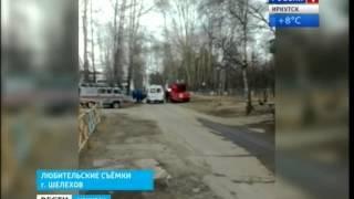 """МЧСники и пожарные спасали кота, застрявшего на дереве в Шелехове, """"Вести-Иркутск"""""""