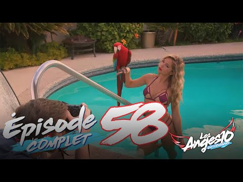 Les Anges 10 (Replay entier) - Episode 58 : Charles s'affiche, Maddy s'affole