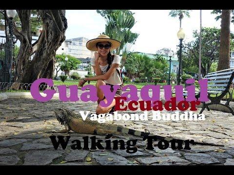 Guayaquil Ecuador Walking Tour
