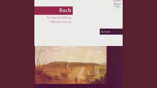 Canones Diversi Super Thema Regium: Canon 5 A 2 Per Tonos (Bach)