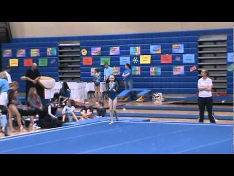 level 5 state gymnastics meet pennsylvania game
