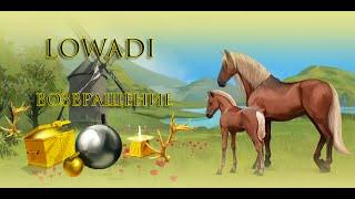 Lowadi  -  возвращение