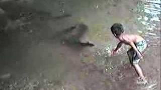Giant Freshwater Eels 巨大うなぎTahiti French Polynesian  タヒチ フレン