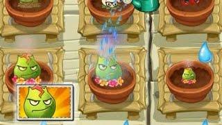 Plants vs Zombies 2 - Lava Guava in Zen Garden