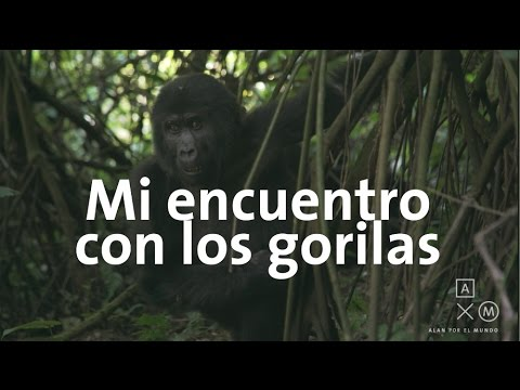 Mi encuentro cercano con los gorilas | Uganda y Ruanda #6