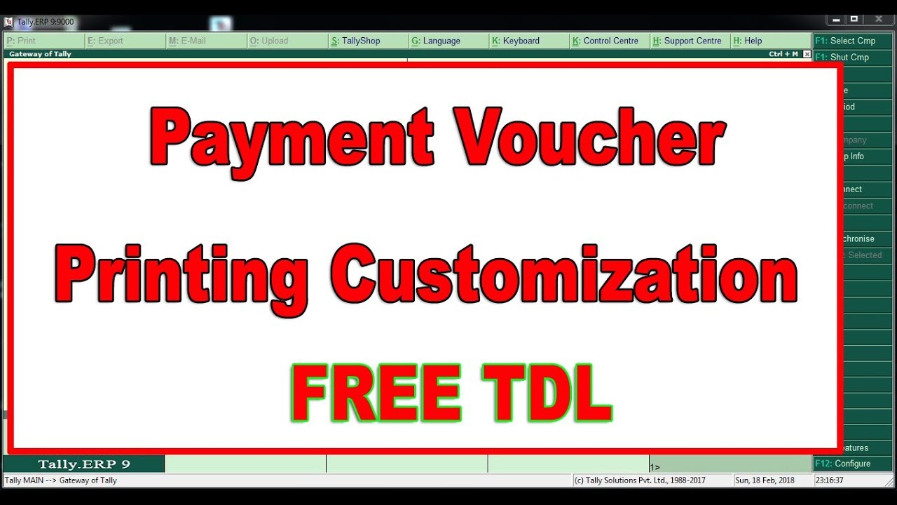How to Print Payment Voucher in Tally ERP9