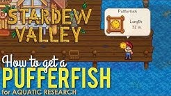 How to get a Pufferfish in Stardew Valley, Aquatic Research