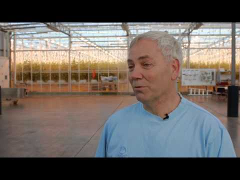 Ron Moes | Windset Farms