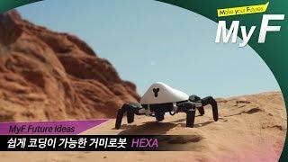 쉽게 코딩가능한 거미로봇 #미래채널 #마이에프 #myf