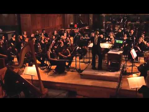 The Recording of The Legend of Zelda 25th Anniversary Orchestra CD - Great Fairy's Fountain Theme