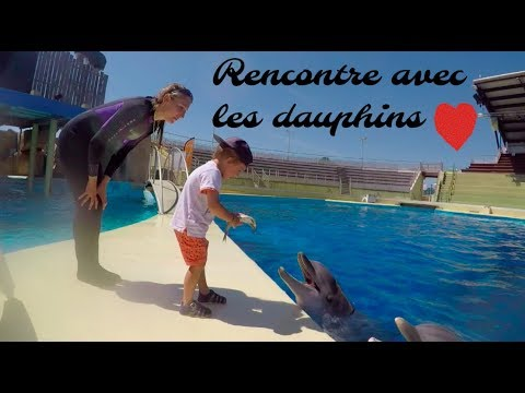 rencontre avec les dauphins antibes)
