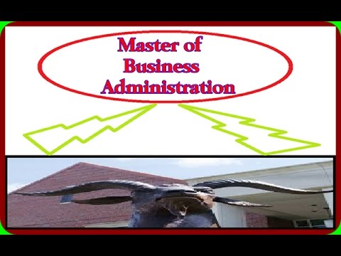 MBA / Master of Business Administration / MBA Programs