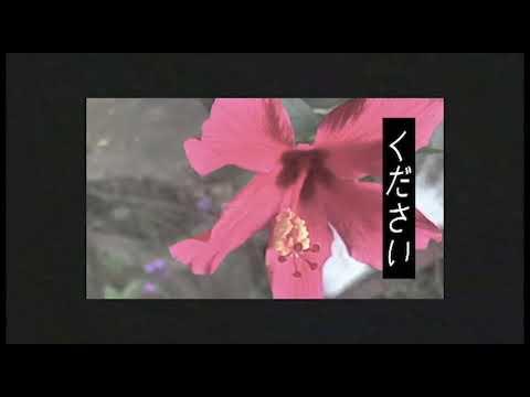 Kudasai - Technicolor