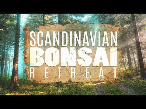 SCANDINAVIAN BONSAI RETREAT - A Bonsai Adventure PART 1