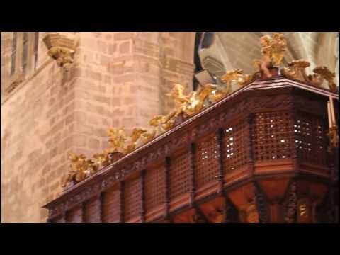 Mi visita a la catedral de Palma