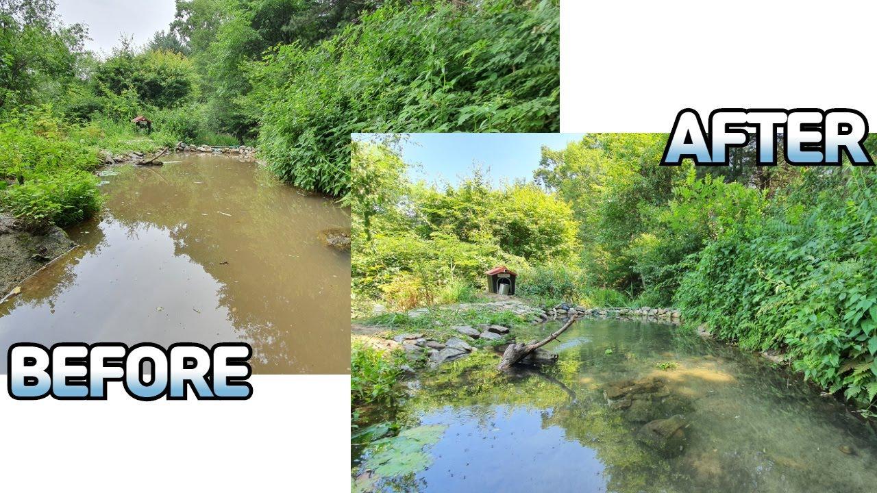 연못이 흙탕물로 변했습니다. 연못 환수 | 연못 청소 | 새둥지 | 황토EM흙공